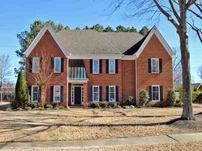 Germantown Single Family Home For Sale: 2060 Spring Hollow