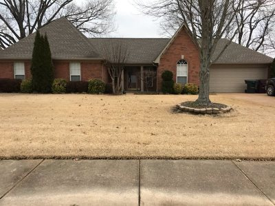 Collierville Single Family Home For Sale: 324 Bradford