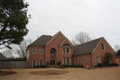 Collierville Single Family Home For Sale: 2248 Robbins Nest
