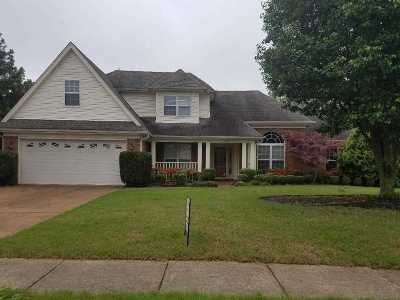 Bartlett Single Family Home For Sale: 6335 Needle Ridge Rd