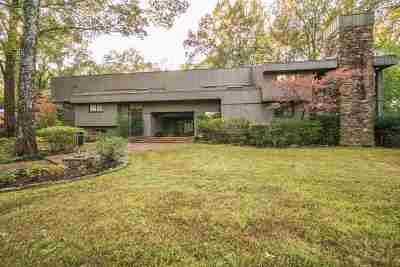 Memphis Single Family Home For Sale: 385 S Shady Grove