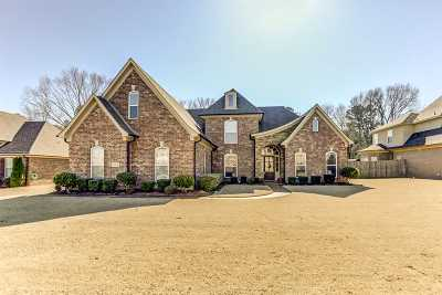 Collierville Single Family Home For Sale: 233 Amber Waves