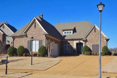 Olive Branch Single Family Home For Sale: 6856 Dakota