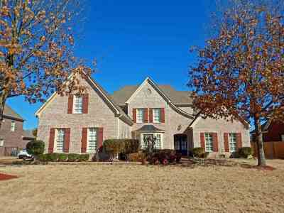 Collierville Single Family Home For Sale: 610 Hawks Peaks