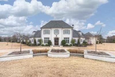 Collierville, Cordova, Germantown, Memphis Single Family Home For Sale: 8983 Hollybrook