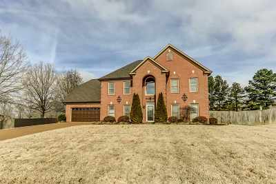 Arlington Single Family Home For Sale: 12026 Country Valley