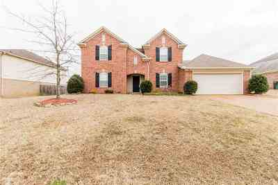 Bartlett Single Family Home For Sale: 5128 Catoosa