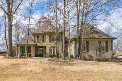 Lakeland Single Family Home For Sale: 4481 Mount Gillespie