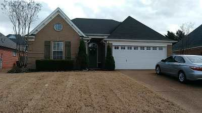 Bartlett Single Family Home For Sale: 4060 Fairway View