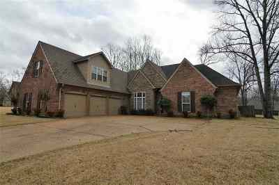 Bartlett Single Family Home For Sale: 8273 Thorne