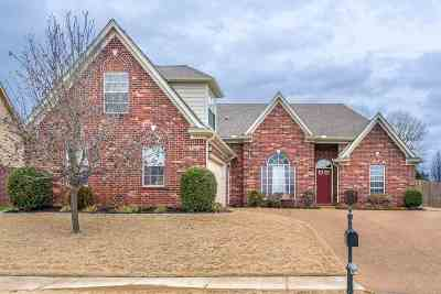 Arlington Single Family Home For Sale: 11176 Arlington Trace