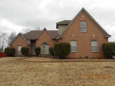 Arlington Single Family Home For Sale: 11130 Ewe Turn