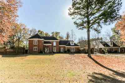 Collierville Single Family Home For Sale: 10125 Misty Hill