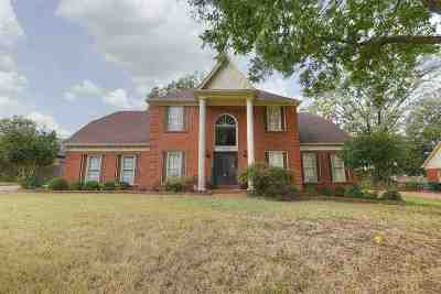 Germantown Single Family Home For Sale: 3119 Hayley