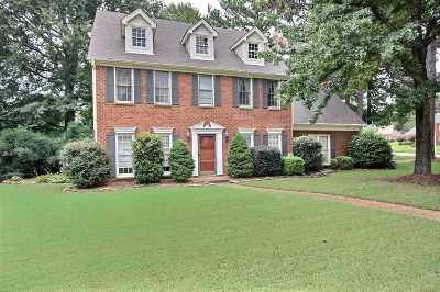 Collierville Single Family Home For Sale: 950 Valleyview