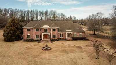 Collierville Single Family Home For Sale: 9376 Forest Wind