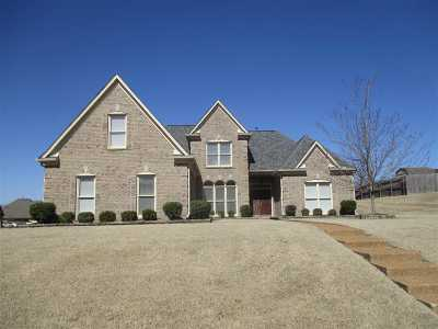 Arlington Single Family Home For Sale: 12369 Richmark