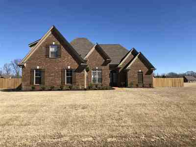 Southaven Single Family Home For Sale: 1768 Marcia Louise