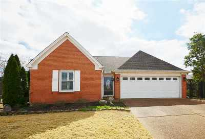 Collierville Single Family Home For Sale: 1139 Barn Swallow