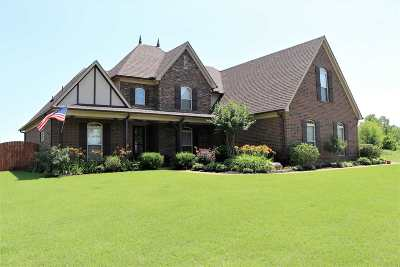 Millington Single Family Home For Sale: 7176 Ryan Hill