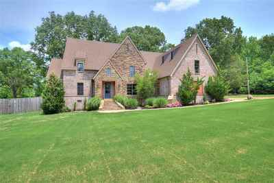 Lakeland Single Family Home For Sale: 9470 Salem Woods