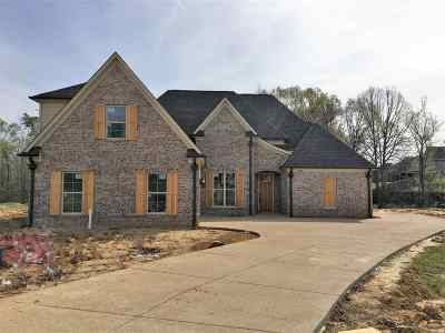 Southaven Single Family Home For Sale: 3954 Buck Run