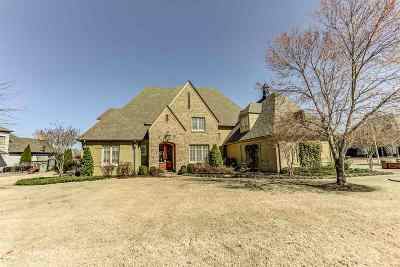 Collierville Single Family Home For Sale: 1166 Braywind