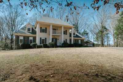Southaven Single Family Home Contingent: 6935 Woodleaf