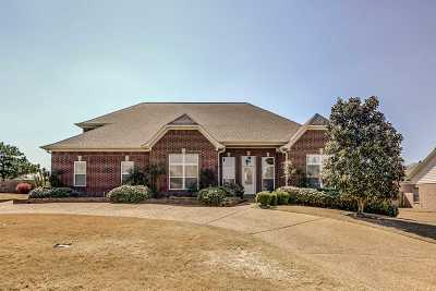 Olive Branch Single Family Home For Sale: 12853 Myrtle Bend