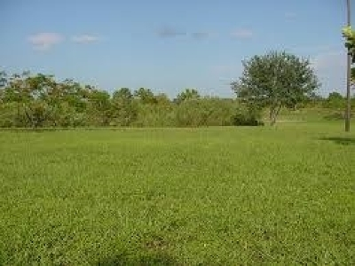 Memphis Residential Lots & Land For Sale: Tchulahoma