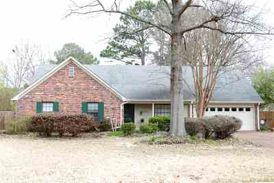 Germantown Single Family Home For Sale: 8030 Sunny Creek