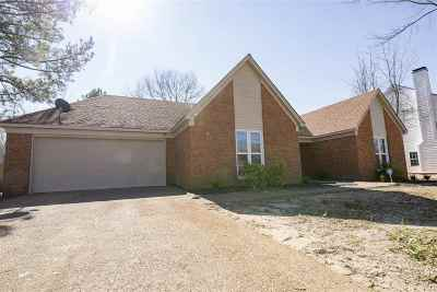 Memphis TN Single Family Home For Sale: $145,000