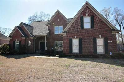 Collierville Single Family Home For Sale: 1241 Macon Ridge