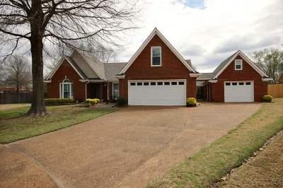 Collierville Single Family Home For Sale: 589 Wilkes