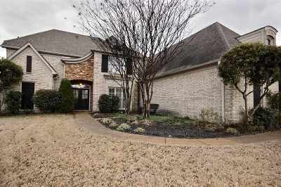 Collierville Single Family Home For Sale: 1265 Purple Mountain