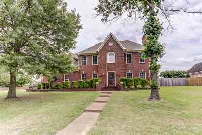 Collierville Single Family Home For Sale: 1360 Pinnacle Point