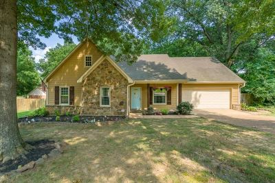 Collierville Single Family Home For Sale: 396 Cascade Falls