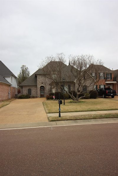 Olive Branch Single Family Home For Sale: 7044 Apache