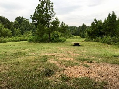 Olive Branch Residential Lots & Land For Sale: 155 Red Banks