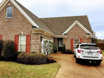 Southaven Single Family Home For Sale: 3317 Champion Hills