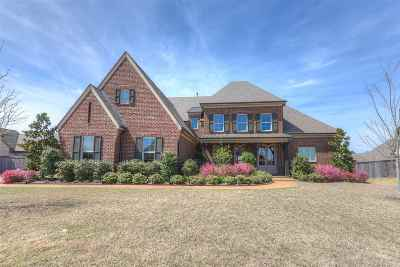 Collierville Single Family Home Contingent: 1347 Conser