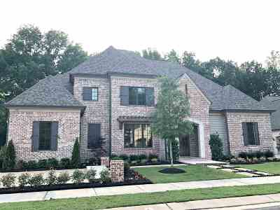 Collierville Single Family Home For Sale: 535 Lambs Brook