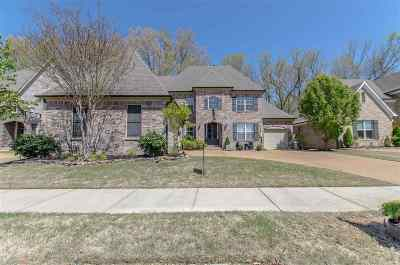 Collierville Single Family Home Contingent: 254 Red Sea