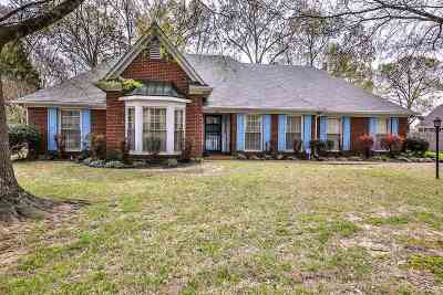Cordova TN Single Family Home Contingent: $220,000