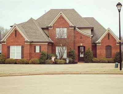 Southaven Single Family Home For Sale: 5056 Maiden Lane