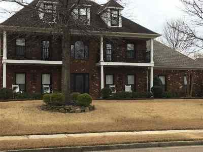 Collierville Single Family Home For Sale: 919 Landing Oaks