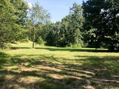 Byhalia Residential Lots & Land For Sale: 429 W Cox