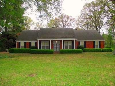Germantown Single Family Home For Sale: 6890 Poplar