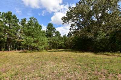 Somerville Residential Lots & Land For Sale: 1 Pitman