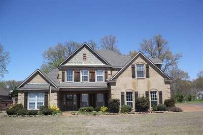 Nesbit Single Family Home For Sale: 3376 Delaney